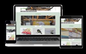 Melbourne Website Designer