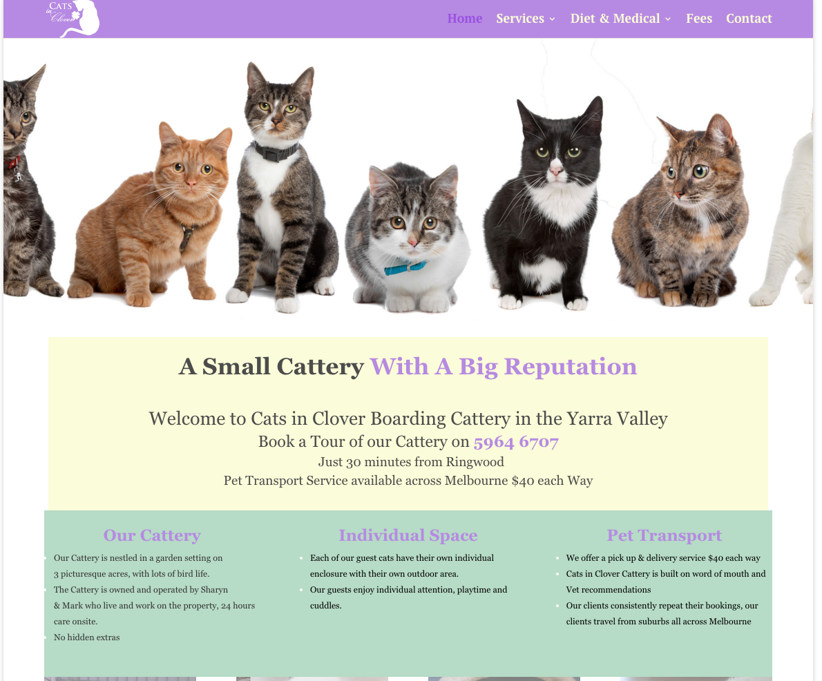 Website Design  Cats in Clover new design 1