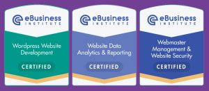 ebusiness institute webmaster certifications
