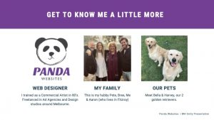Panda Websites Presentation